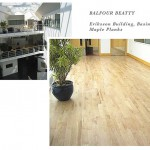 Balfour Beatty, Eriksson Building in Basingstoke. Maple Plank wooden floor.